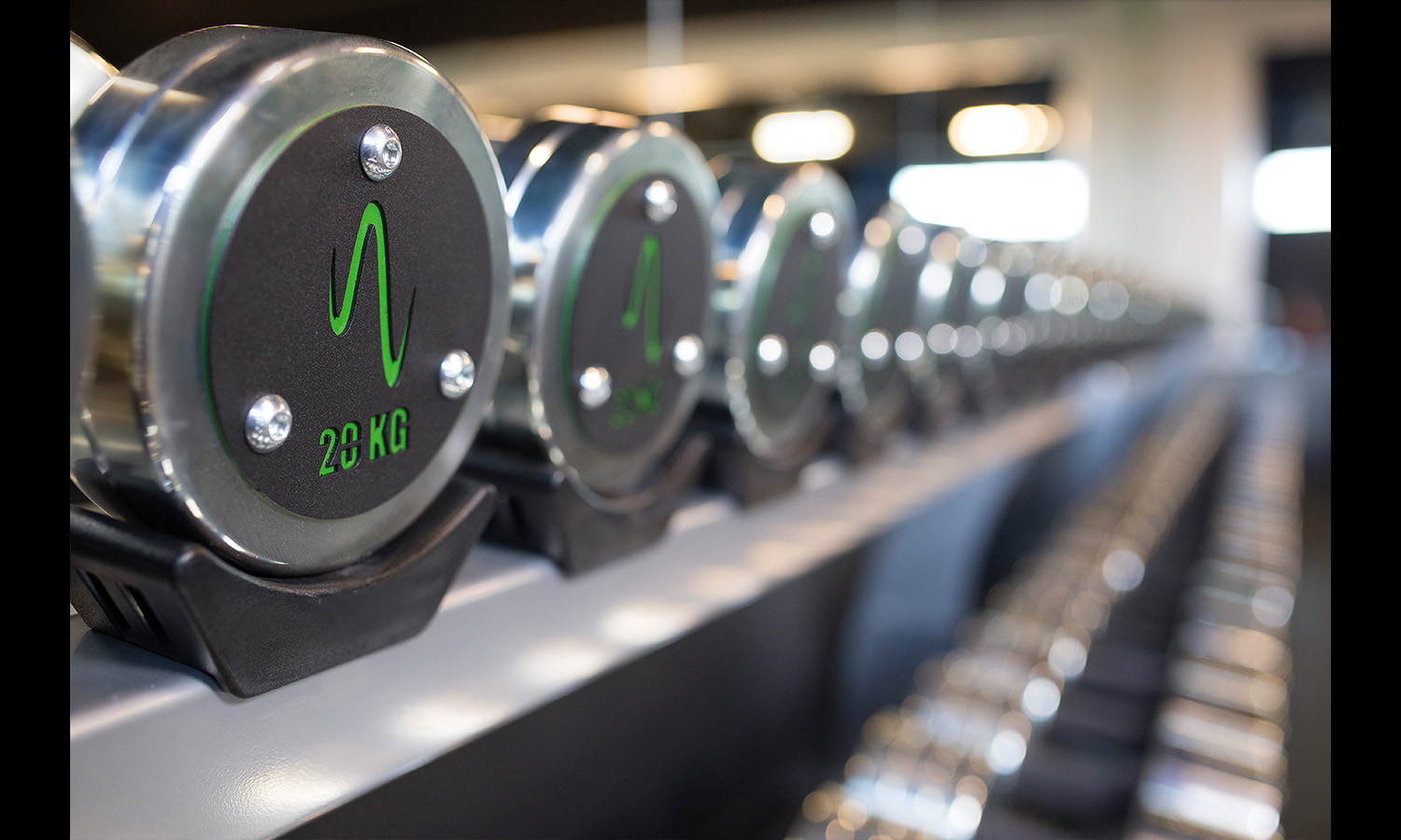 weights at gym Fitness